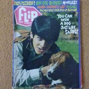 Copy of 1968_american_flip_teen_magazinecu1facebook-001